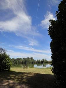 雲も自由に泳いでいるように見える